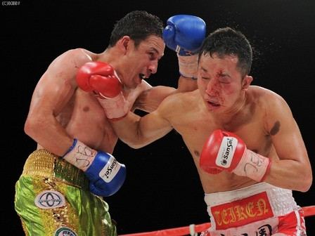 asian boxing news